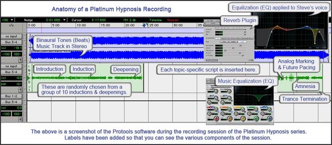 platinum_session.jpg